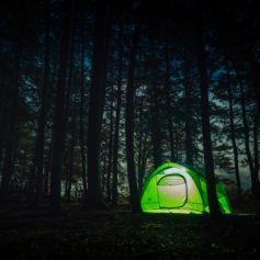 Kamperen in de bossen, Canada