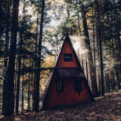 Cabin in de wildernis